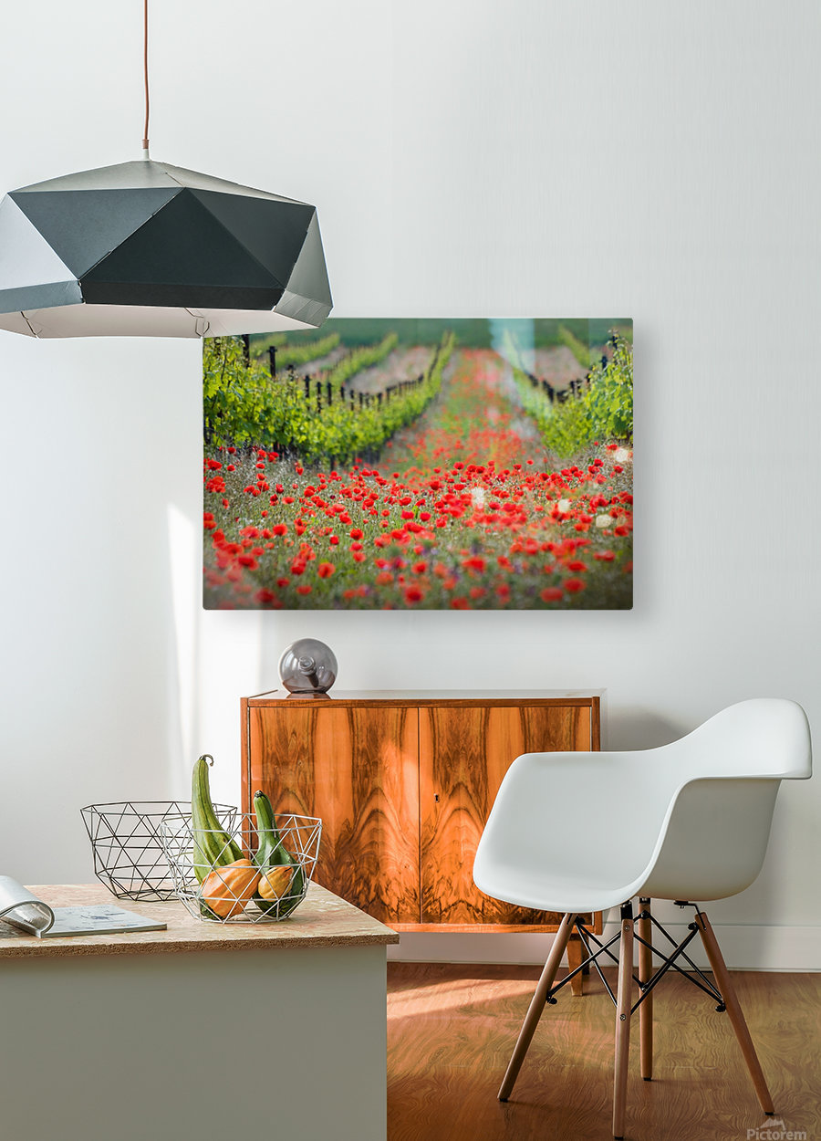 Red district  HD Metal print with Floating Frame on Back