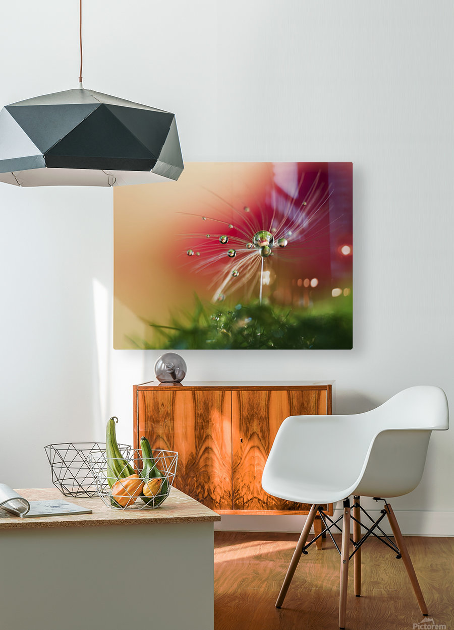 Red Morning  HD Metal print with Floating Frame on Back
