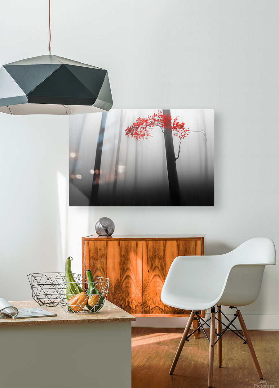illusion  HD Metal print with Floating Frame on Back