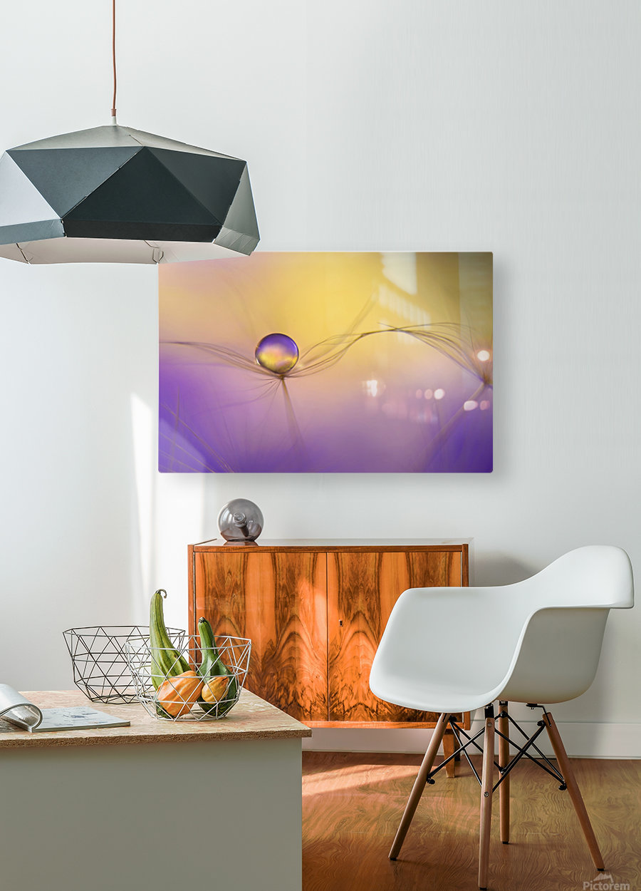 In arms  HD Metal print with Floating Frame on Back