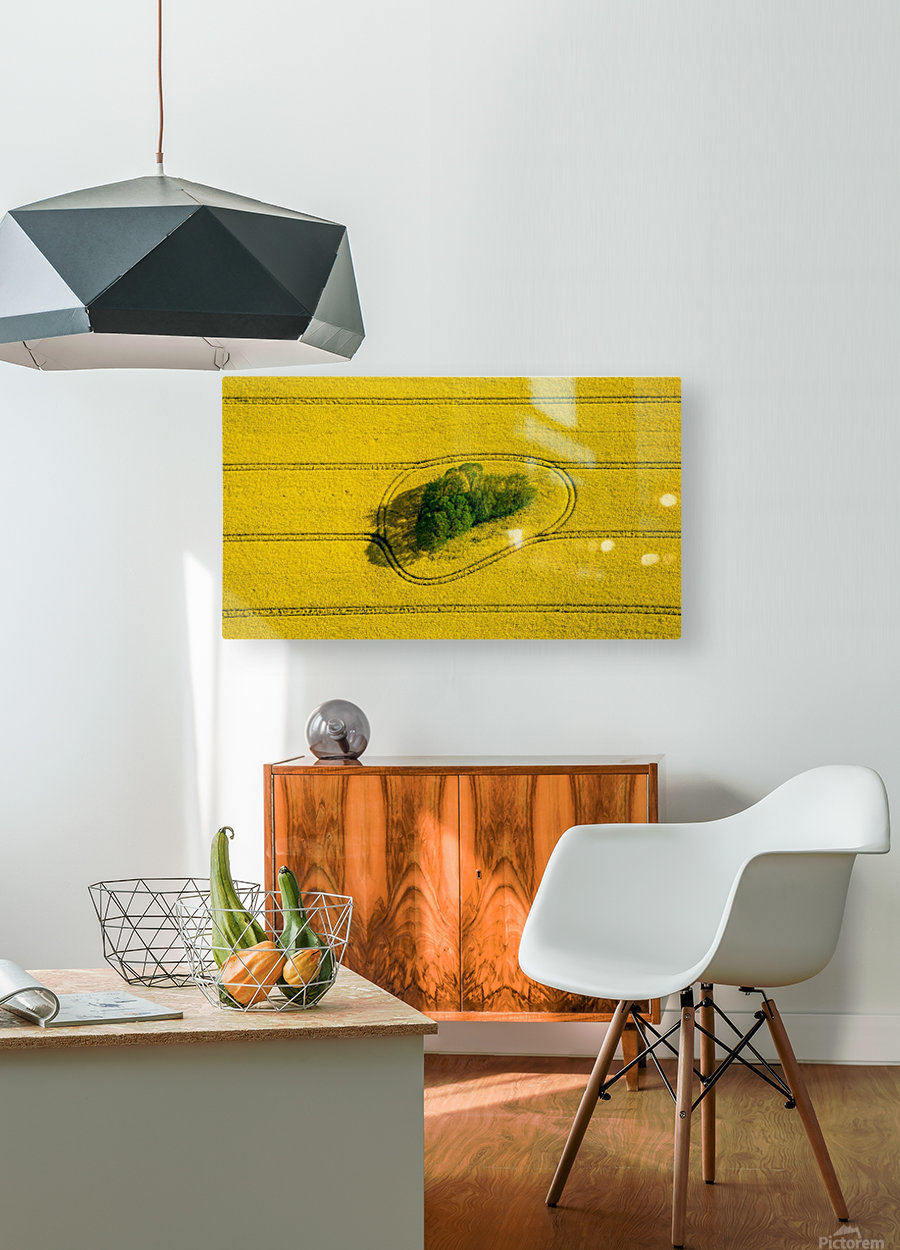 Island in the Field  HD Metal print with Floating Frame on Back