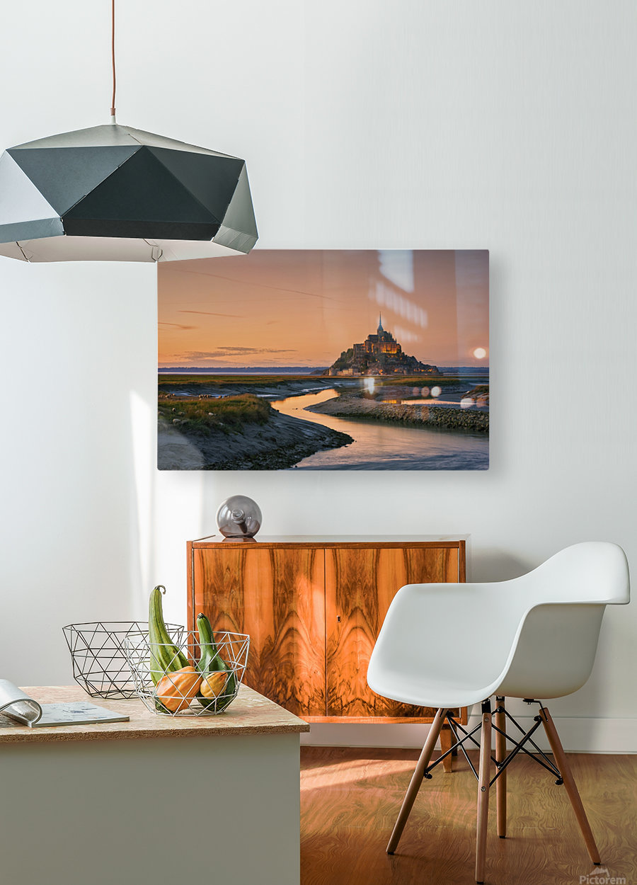 Orangine  HD Metal print with Floating Frame on Back