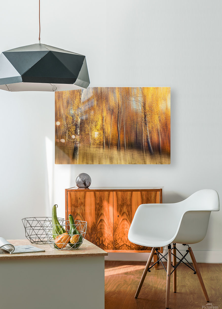 Autumn Birches  HD Metal print with Floating Frame on Back