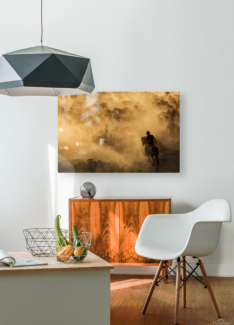 Cappadocia wild horses  HD Metal print with Floating Frame on Back