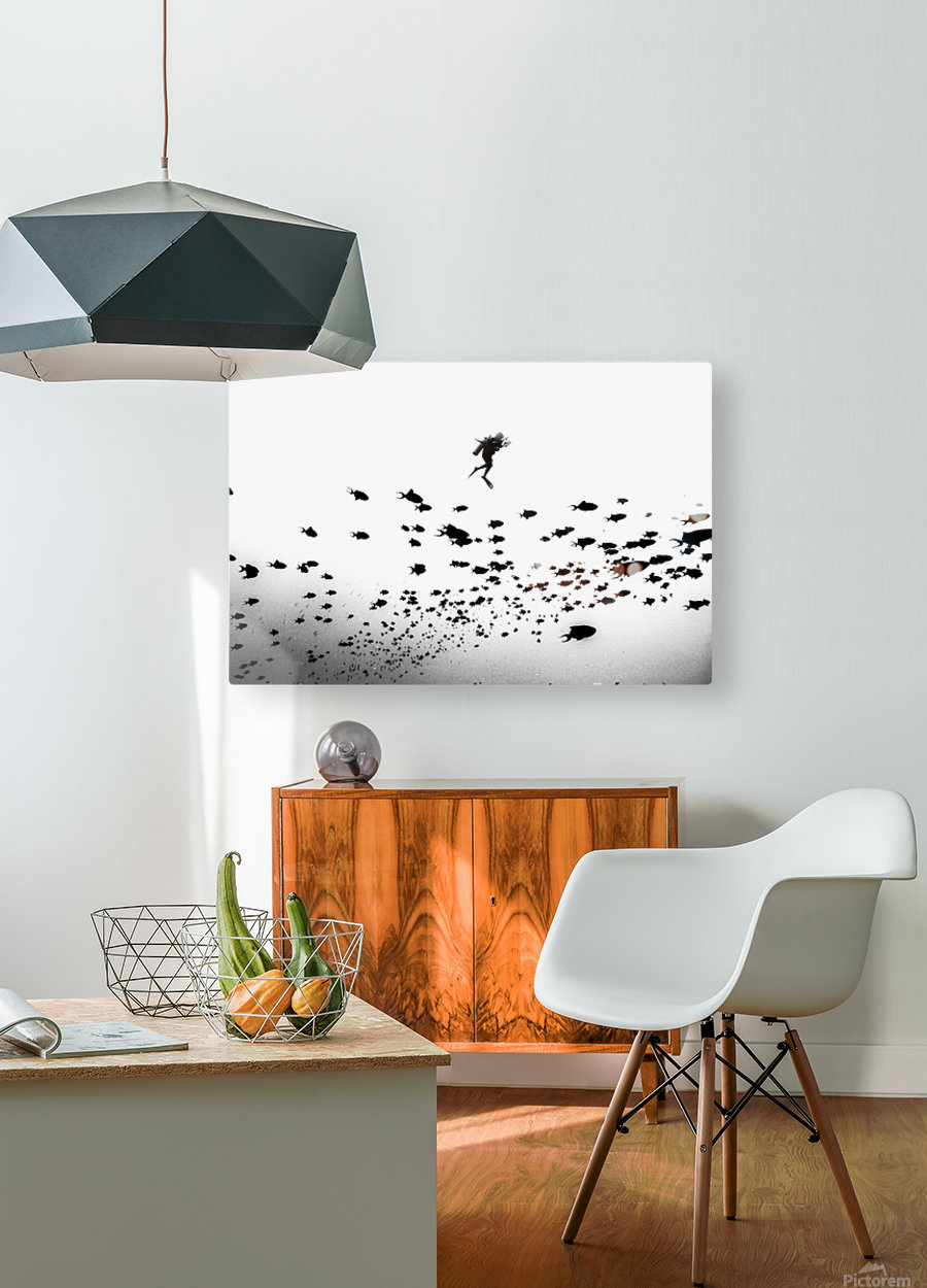 Pied Piper of Hamelin  HD Metal print with Floating Frame on Back