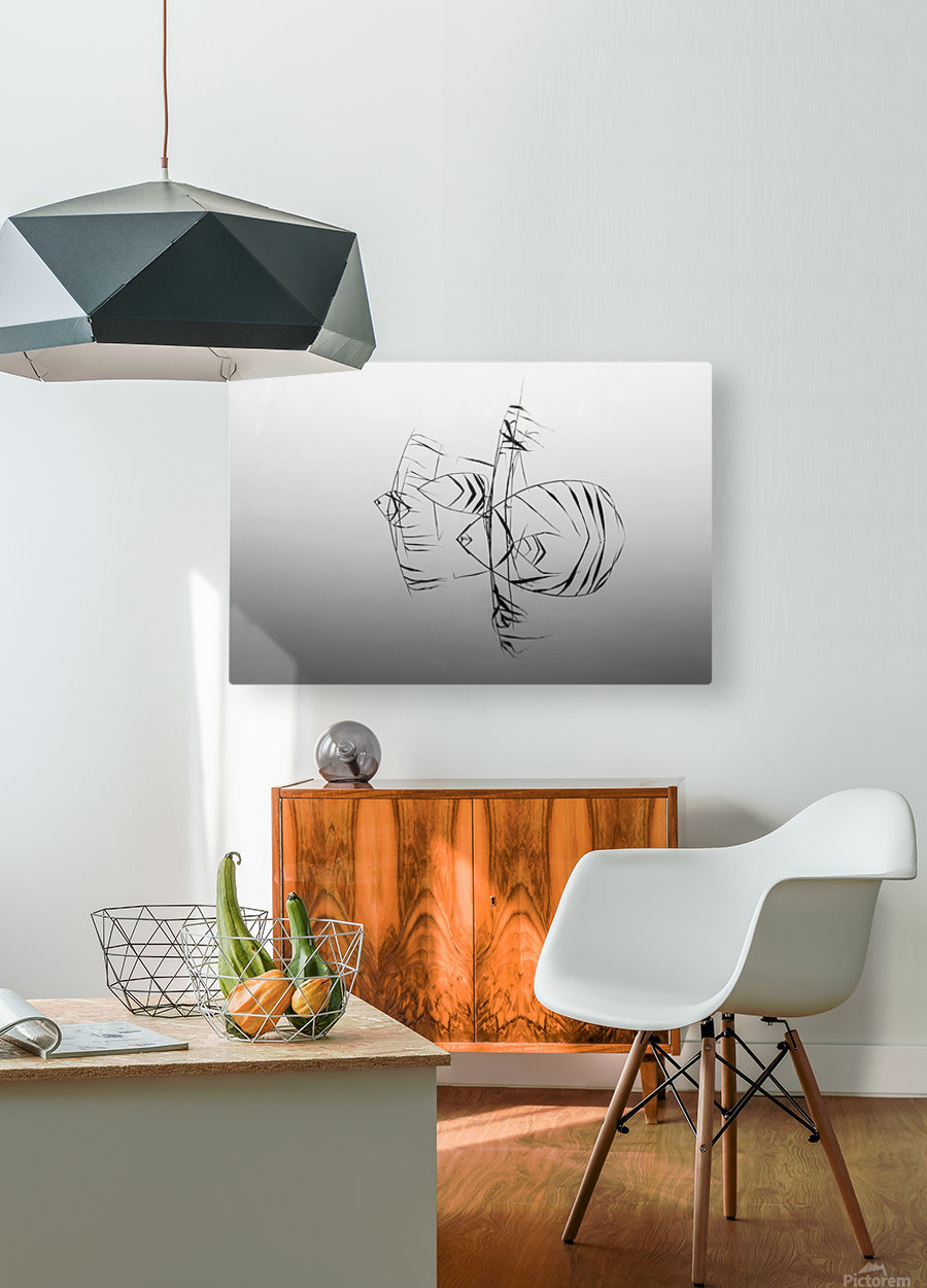 Angelfishes  HD Metal print with Floating Frame on Back