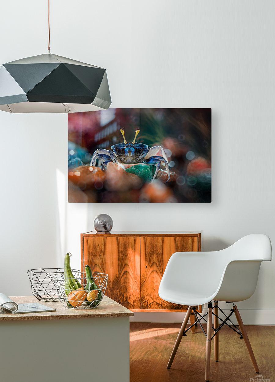 kapiting kacui  HD Metal print with Floating Frame on Back