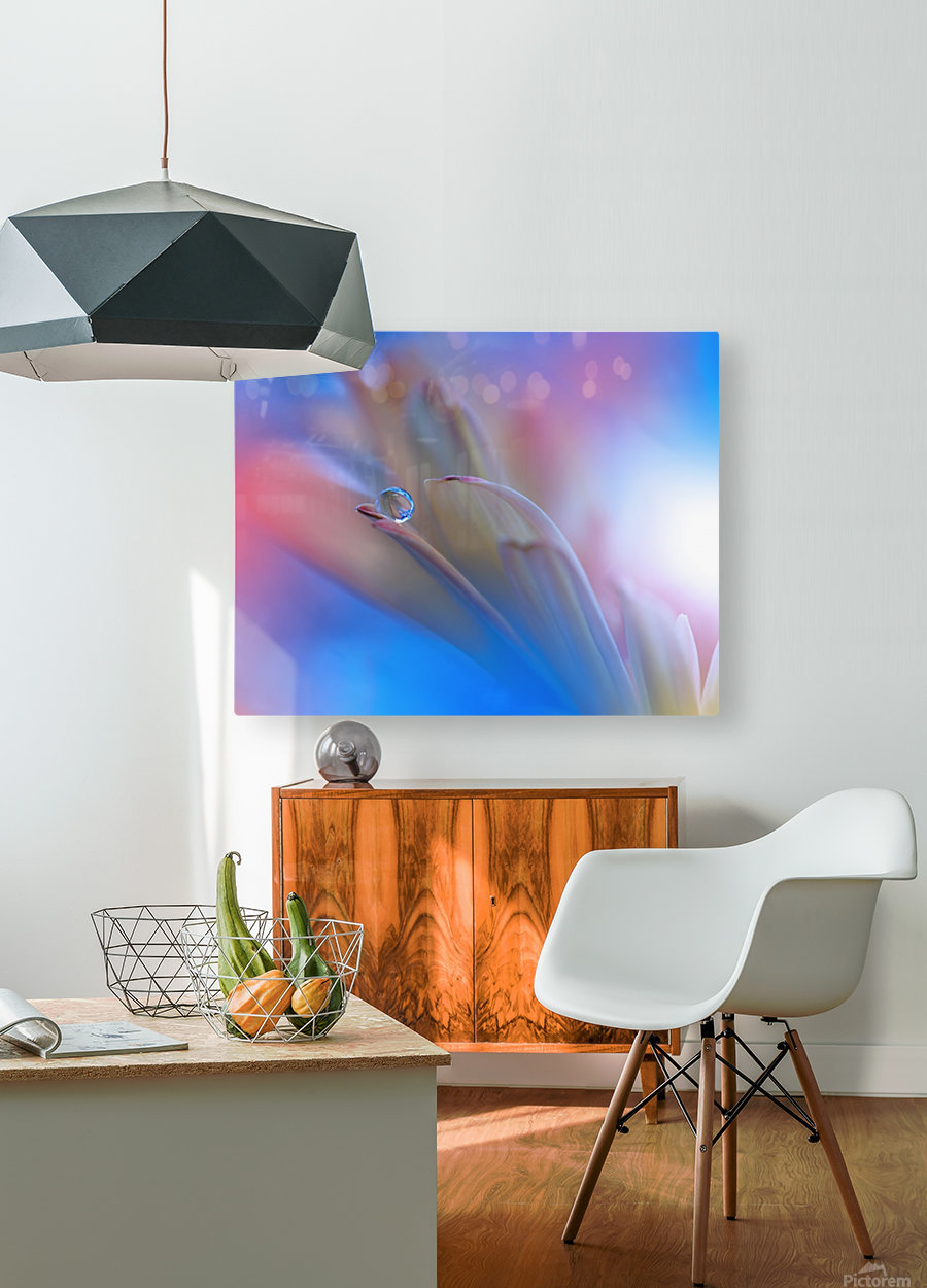 Touch Me Softly...  HD Metal print with Floating Frame on Back