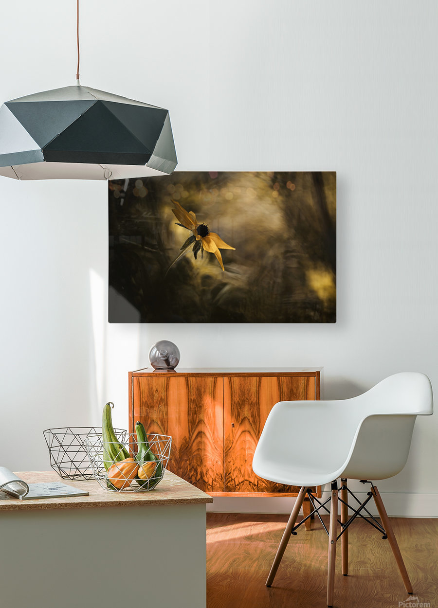Solaris  HD Metal print with Floating Frame on Back