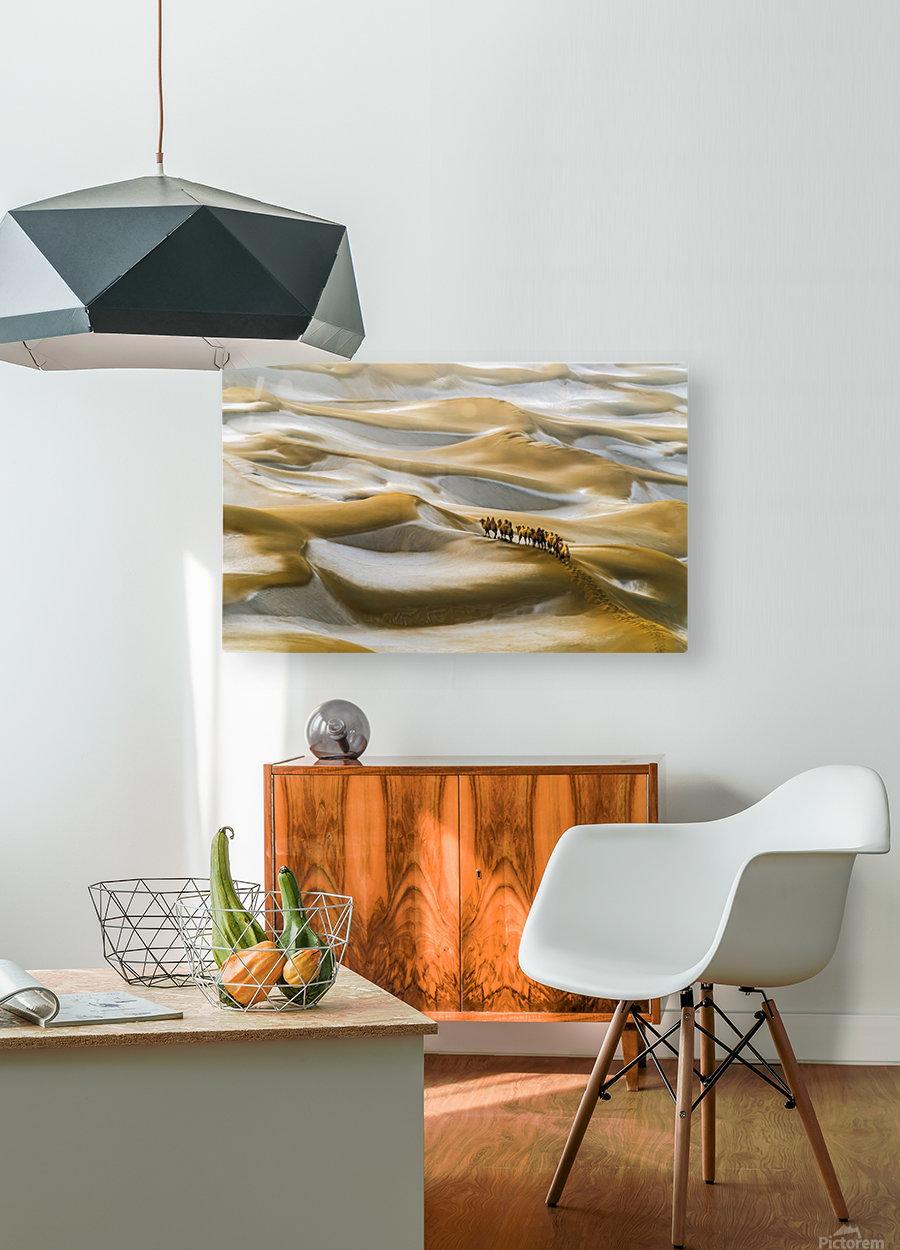 Desert Winter  HD Metal print with Floating Frame on Back