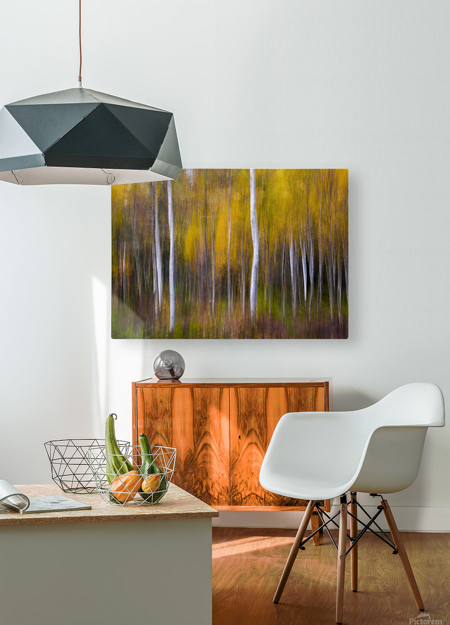 Abstract Fall  HD Metal print with Floating Frame on Back
