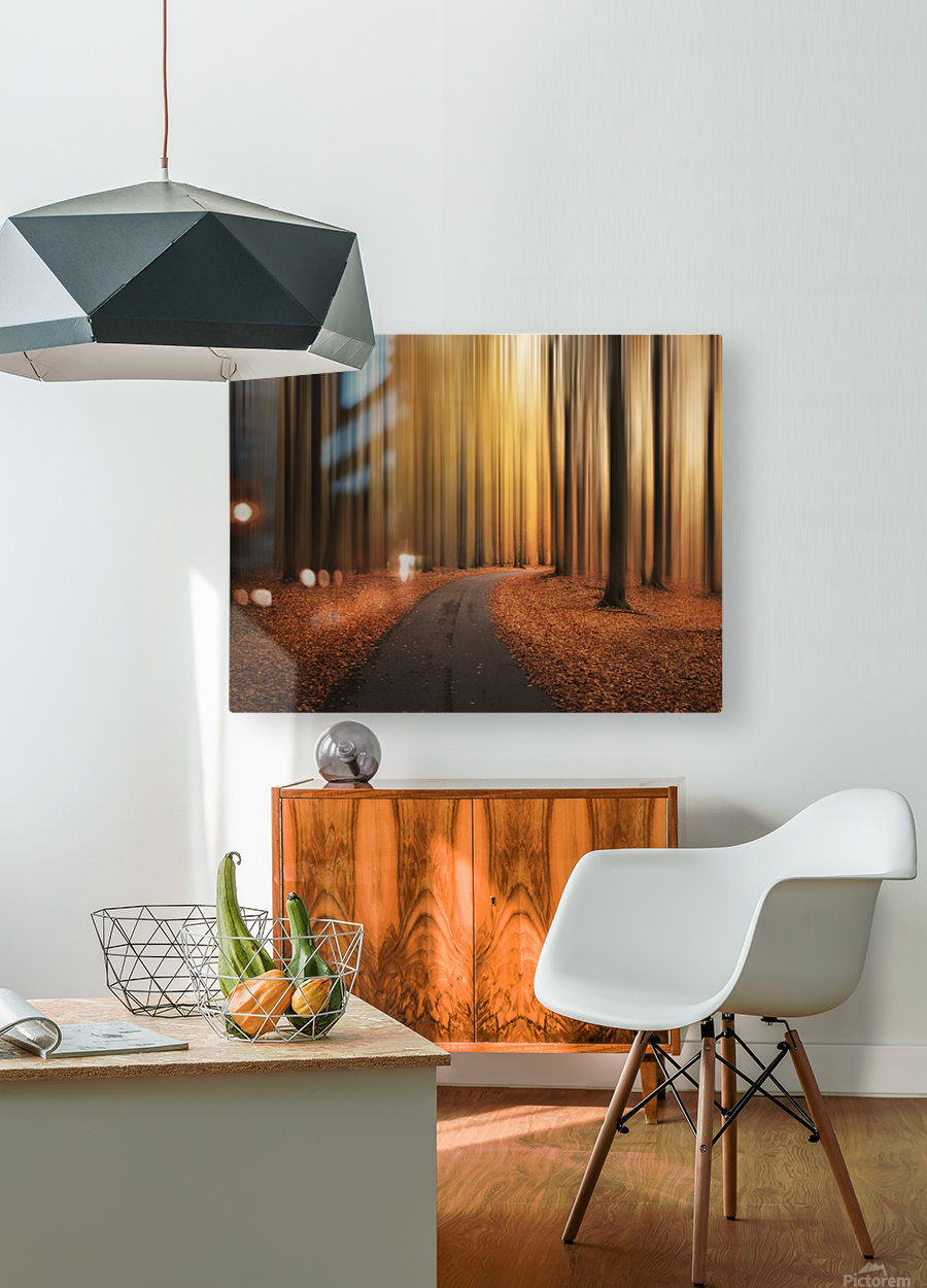 Path to unknown  HD Metal print with Floating Frame on Back
