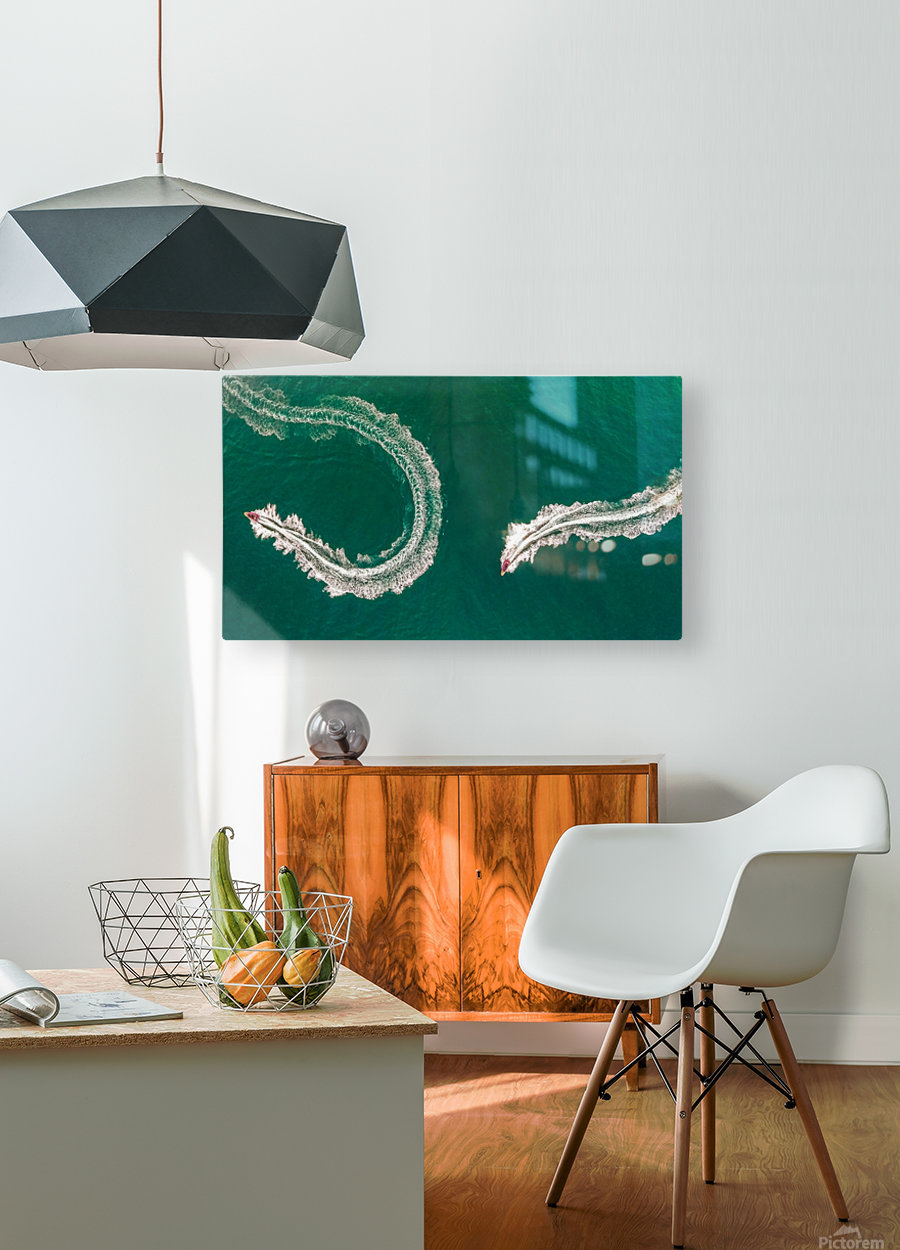 Sea snake  HD Metal print with Floating Frame on Back
