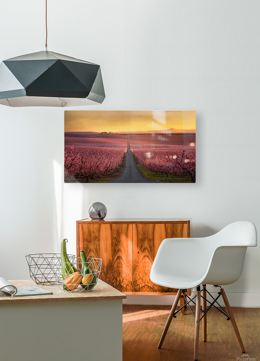 Flowering  HD Metal print with Floating Frame on Back