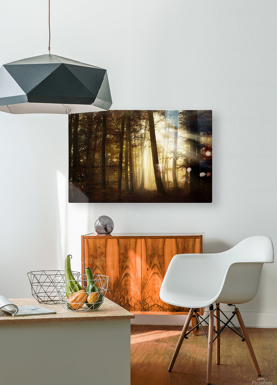 a new day  HD Metal print with Floating Frame on Back