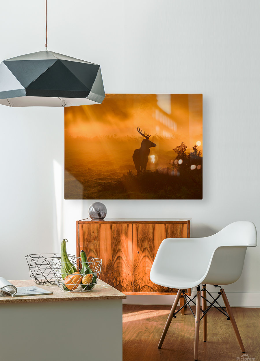 Guard Of Light  HD Metal print with Floating Frame on Back