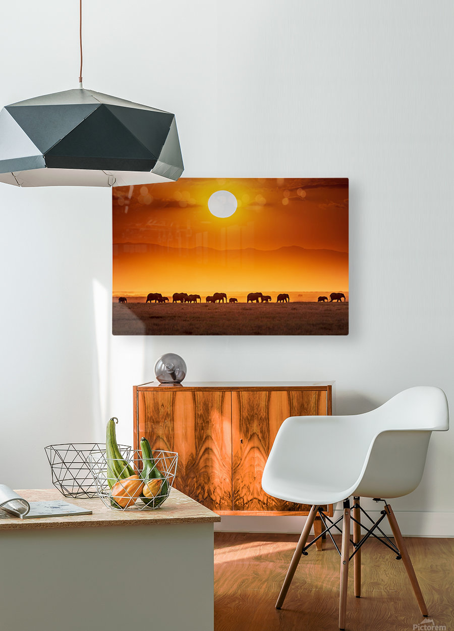 Sunrise parade  HD Metal print with Floating Frame on Back
