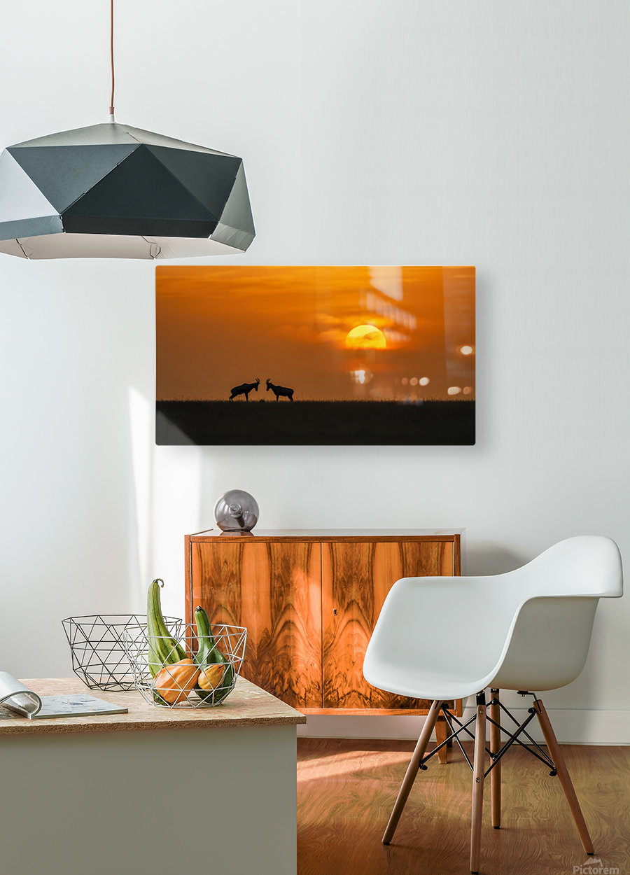 At The Sunset  HD Metal print with Floating Frame on Back