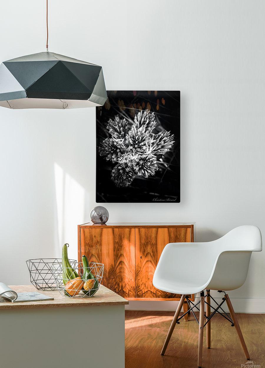 Black beauty   Impression métal HD avec cadre flottant sur le dos