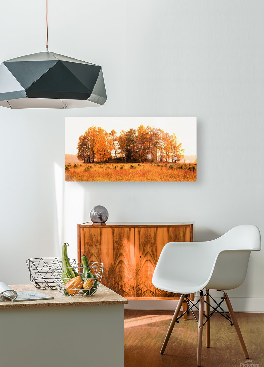 trees of fall  HD Metal print with Floating Frame on Back
