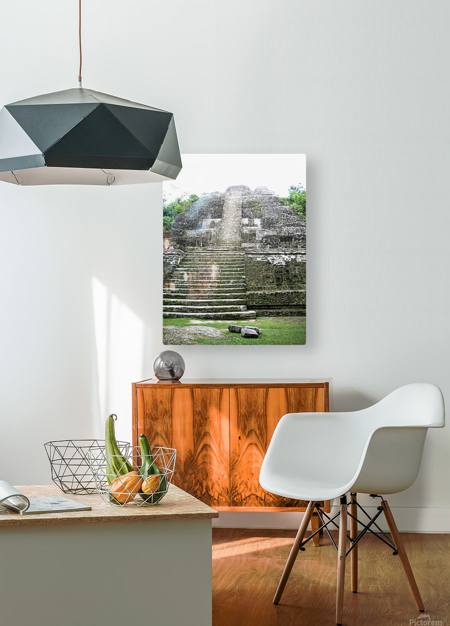 Myan12  HD Metal print with Floating Frame on Back