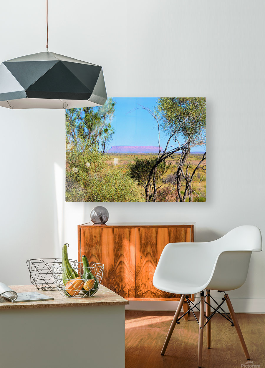 Outback6  HD Metal print with Floating Frame on Back