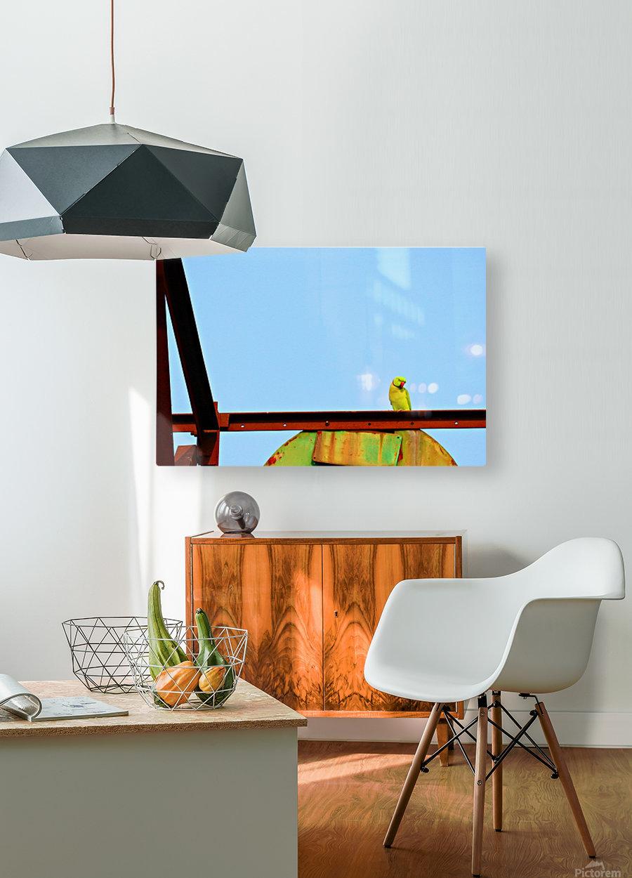Balancing  HD Metal print with Floating Frame on Back