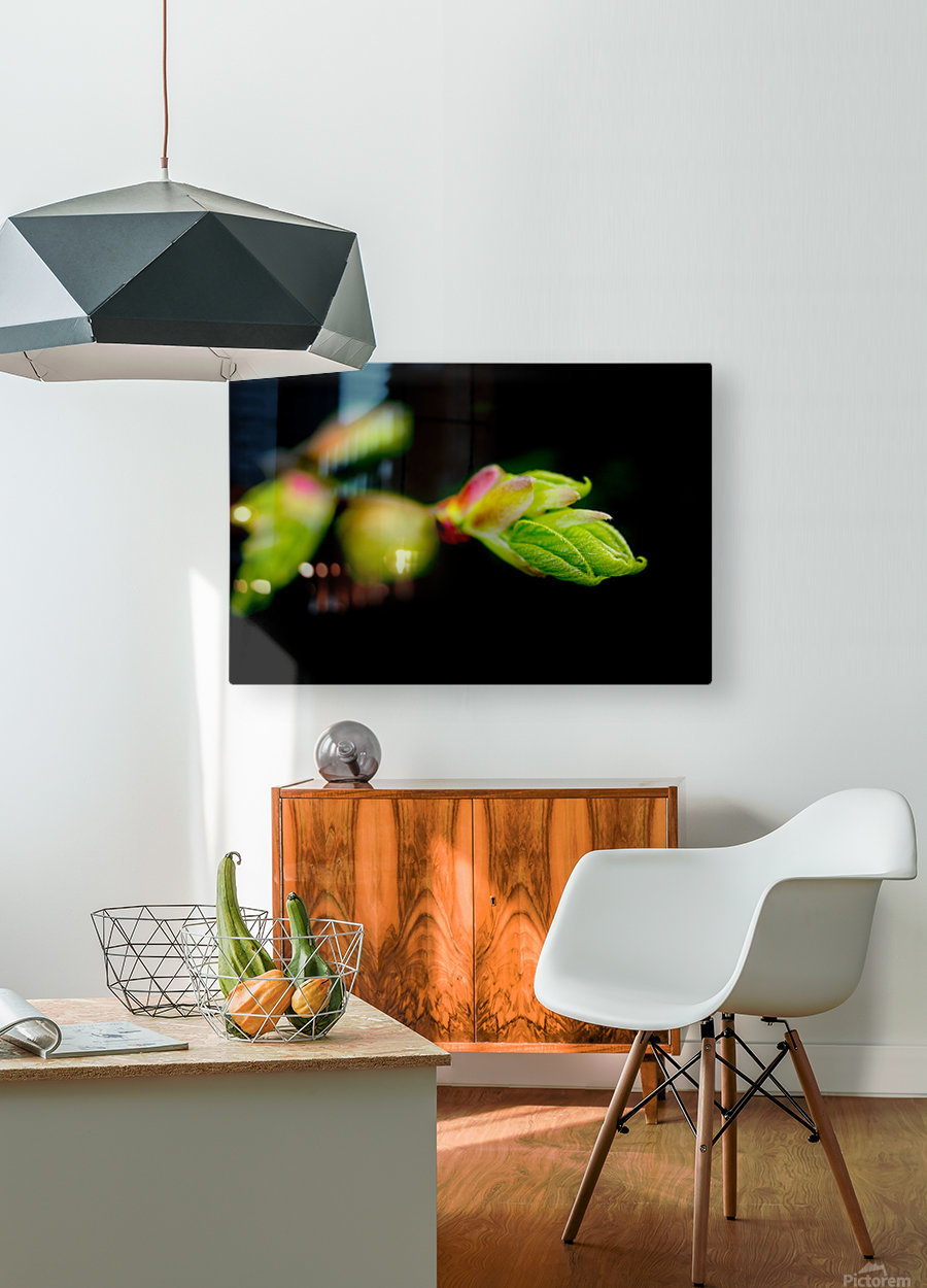 Stepping out from the dark  HD Metal print with Floating Frame on Back