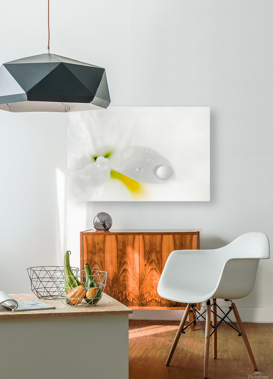 One Droplet  HD Metal print with Floating Frame on Back