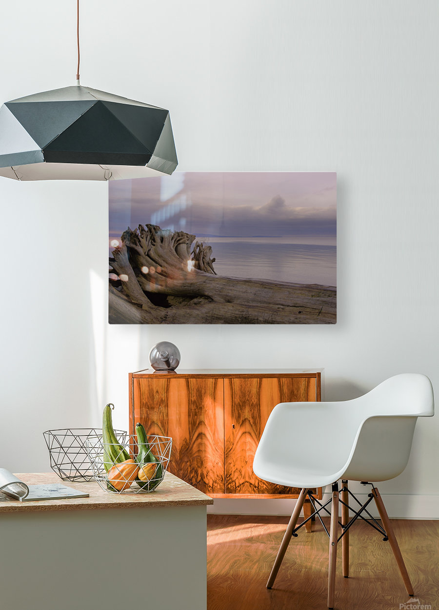 Driftwood  HD Metal print with Floating Frame on Back