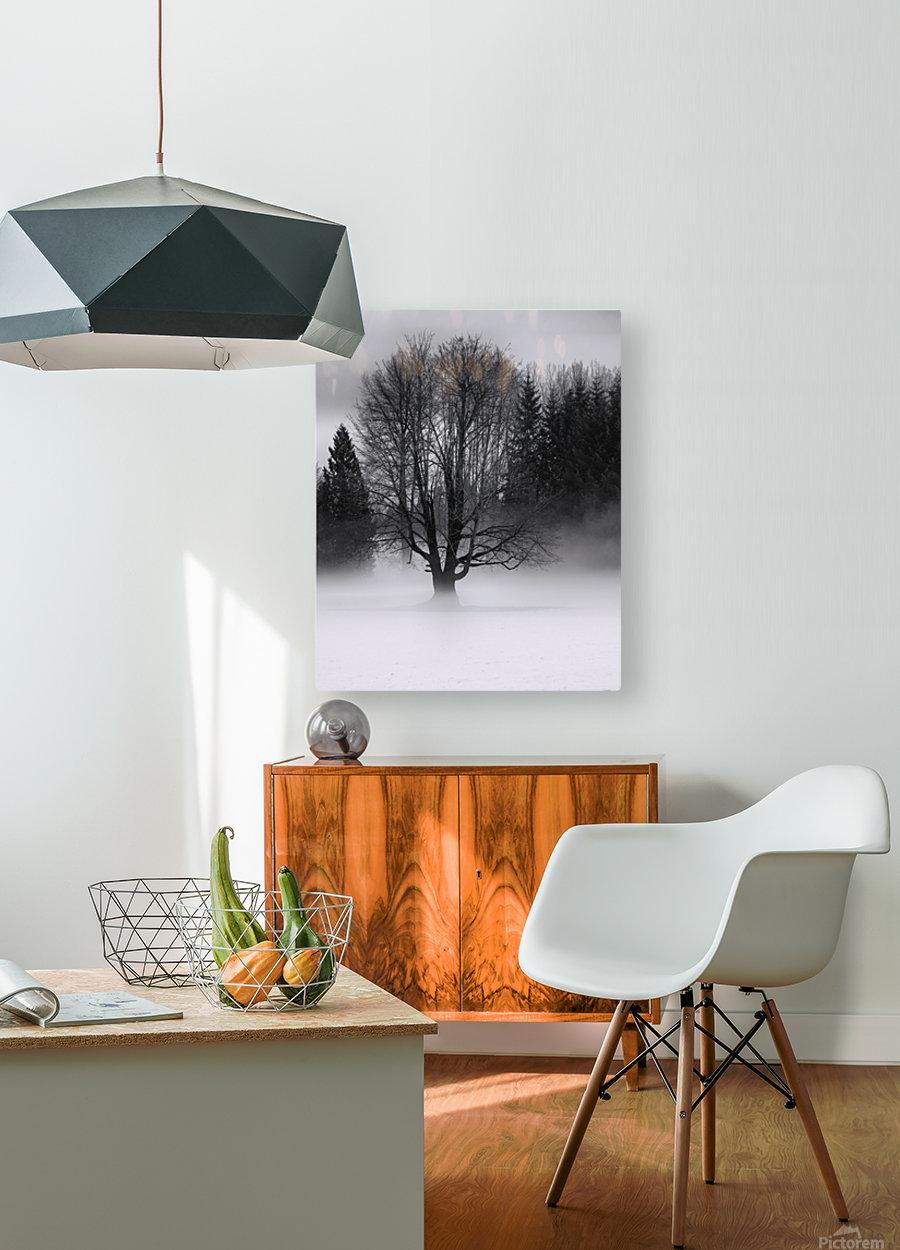 Winter fog  HD Metal print with Floating Frame on Back