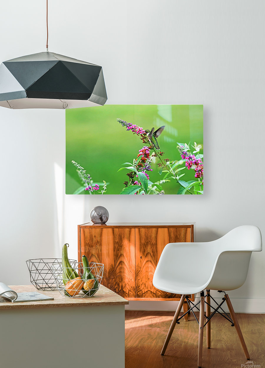 Jewel In The Garden  HD Metal print with Floating Frame on Back