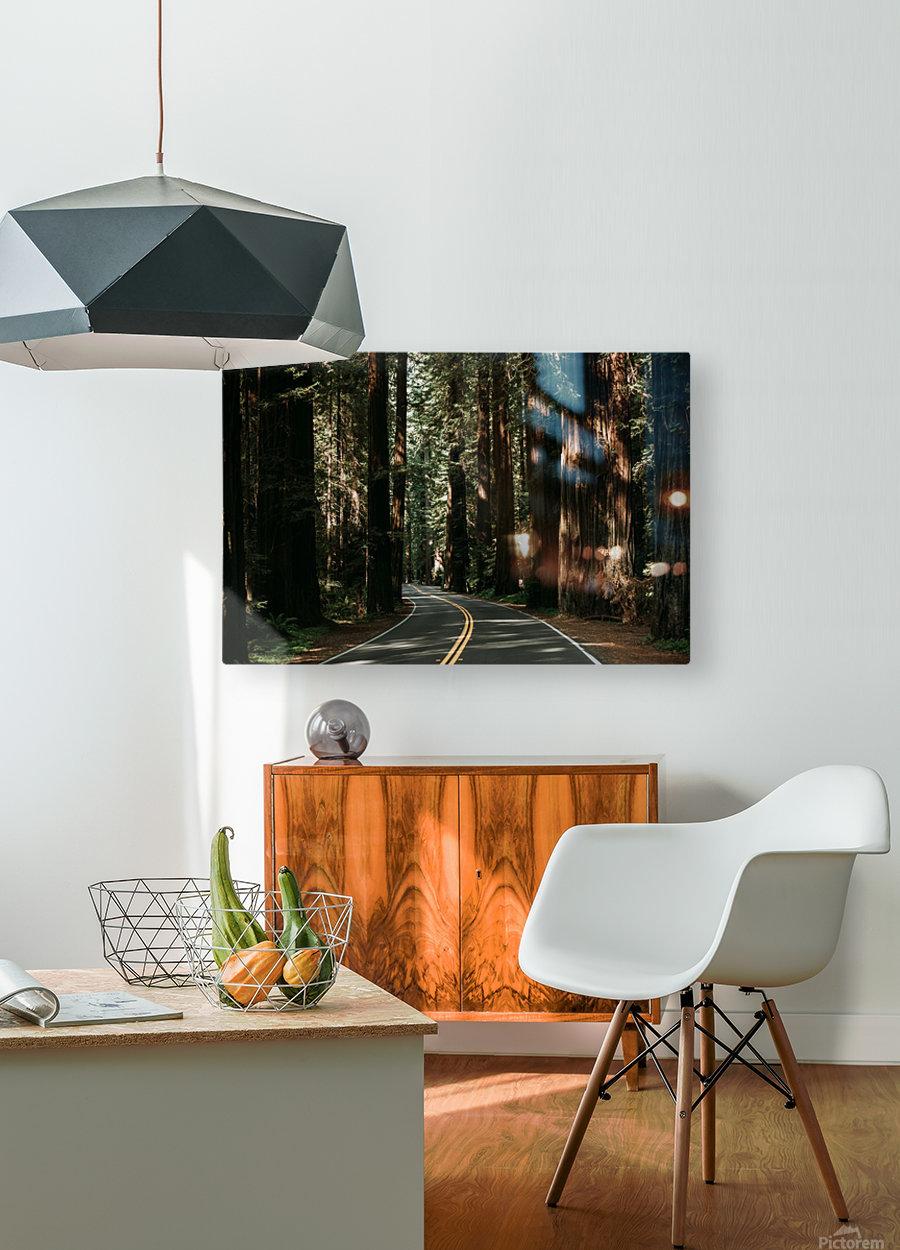 Avenue of the Giants  Impression métal HD avec cadre flottant sur le dos