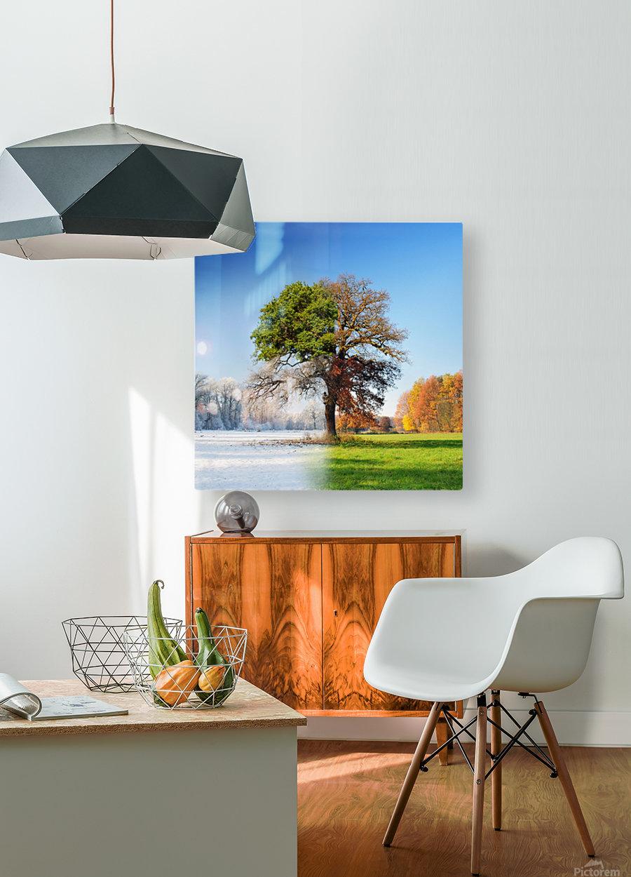 4 seasons  HD Metal print with Floating Frame on Back