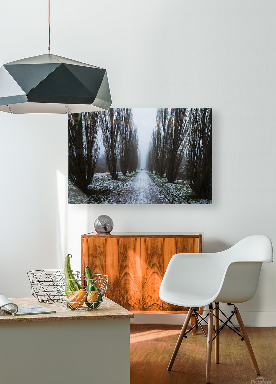 Symetric walk path in fog  HD Metal print with Floating Frame on Back