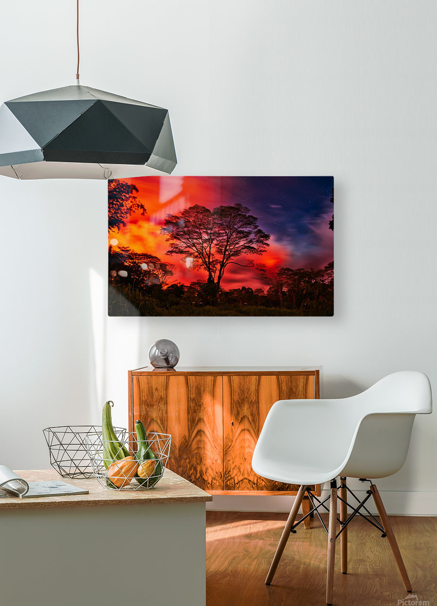 _IBC3569  HD Metal print with Floating Frame on Back