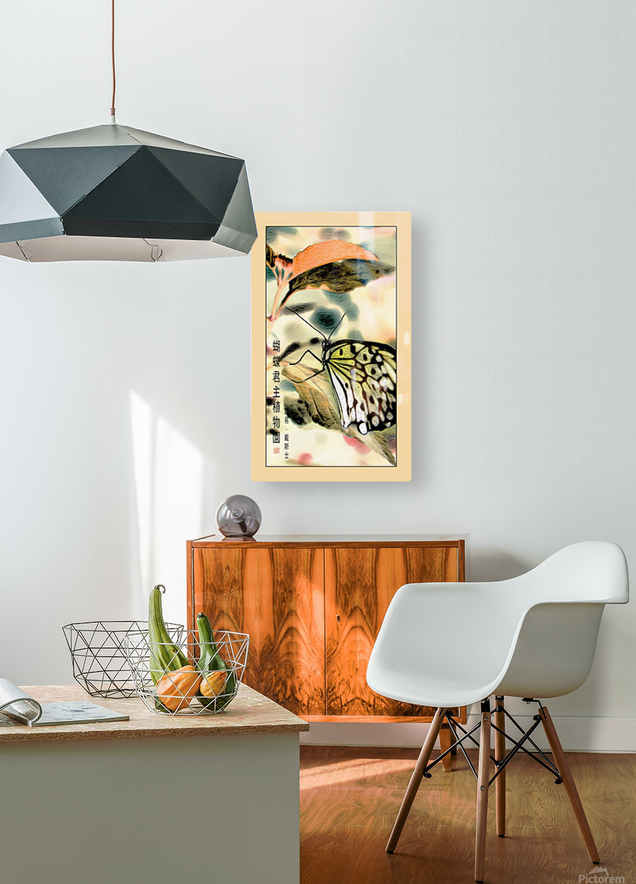 Papillon chinois   HD Metal print with Floating Frame on Back