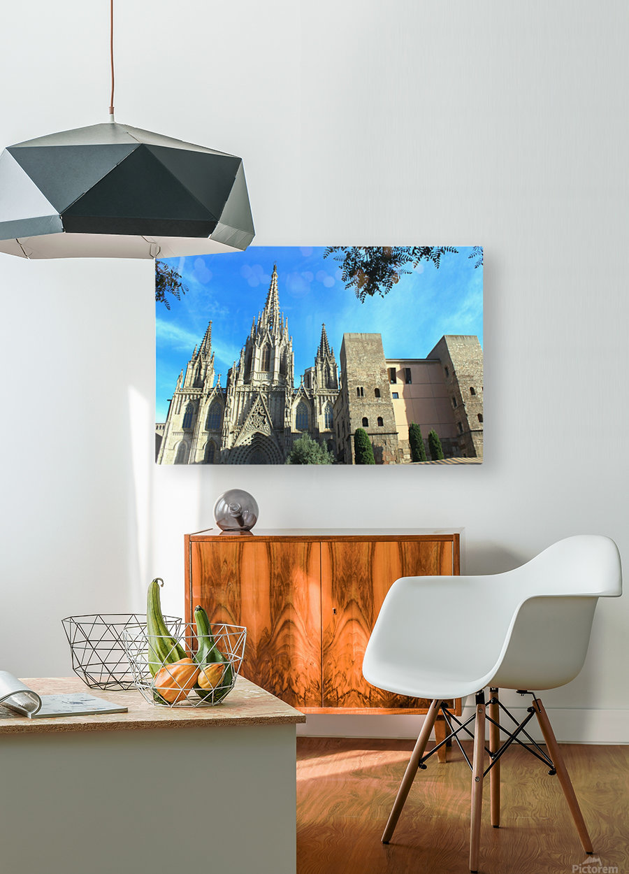 Amazing Barcelona Cathedral  HD Metal print with Floating Frame on Back