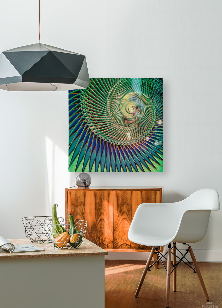 Composition Logarithmique  HD Metal print with Floating Frame on Back