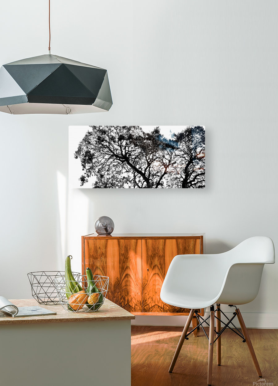 Tree Top  HD Metal print with Floating Frame on Back