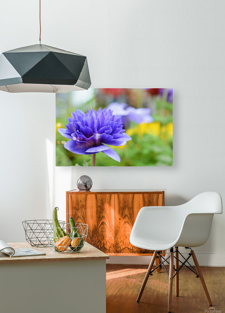 Blue Flowers Photograph  HD Metal print with Floating Frame on Back