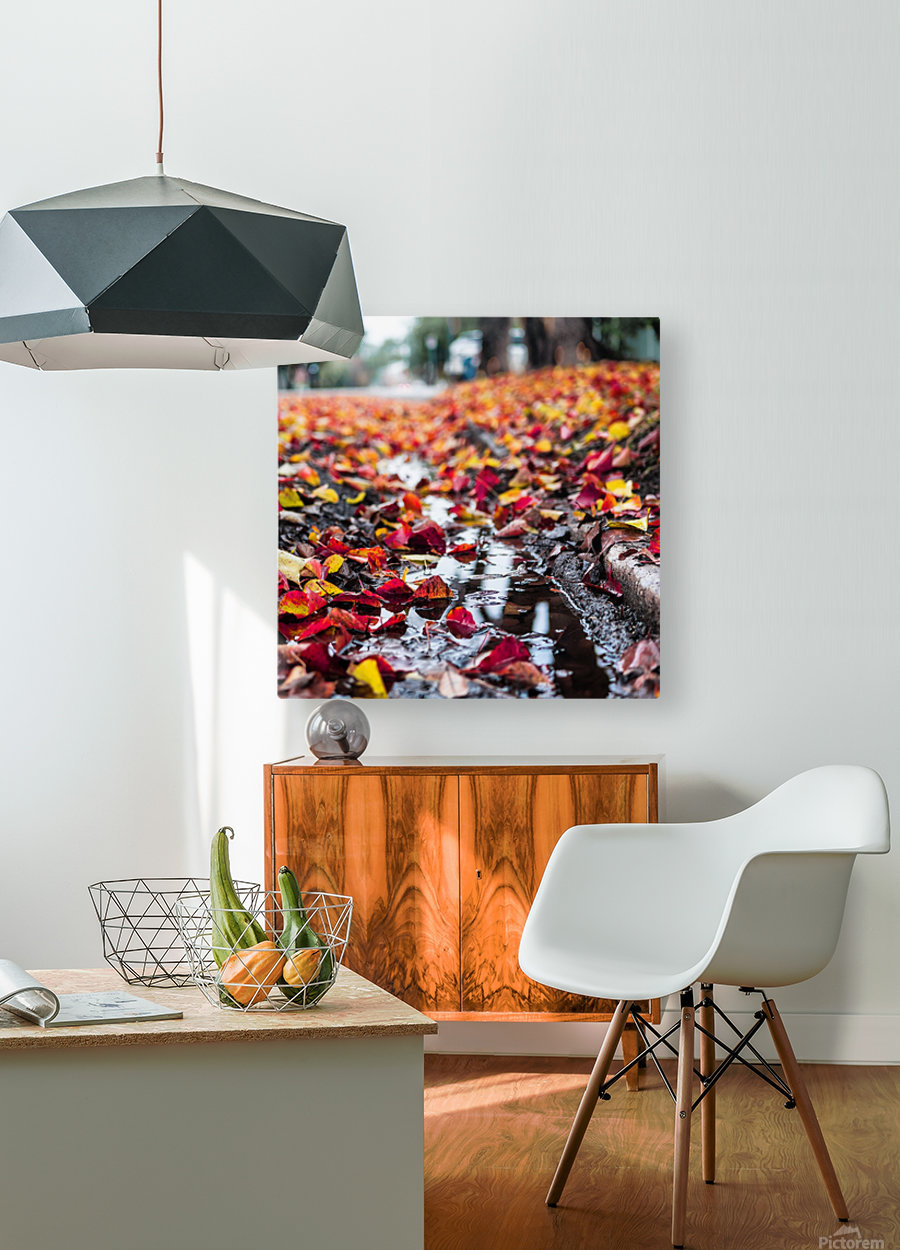 The Colors of Fall  HD Metal print with Floating Frame on Back