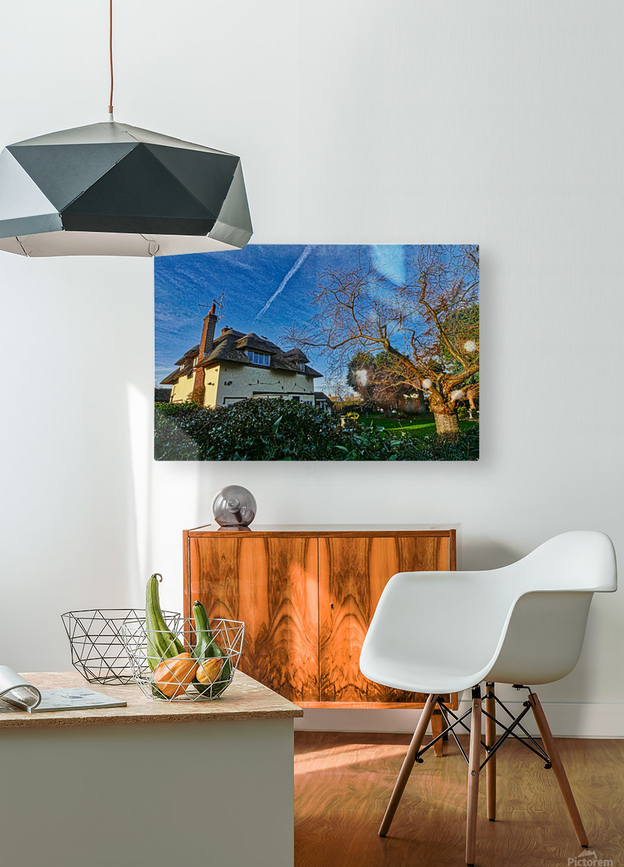 Fox on the roof  HD Metal print with Floating Frame on Back