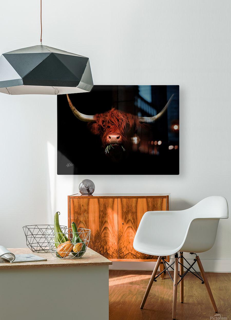 Heidi  HD Metal print with Floating Frame on Back