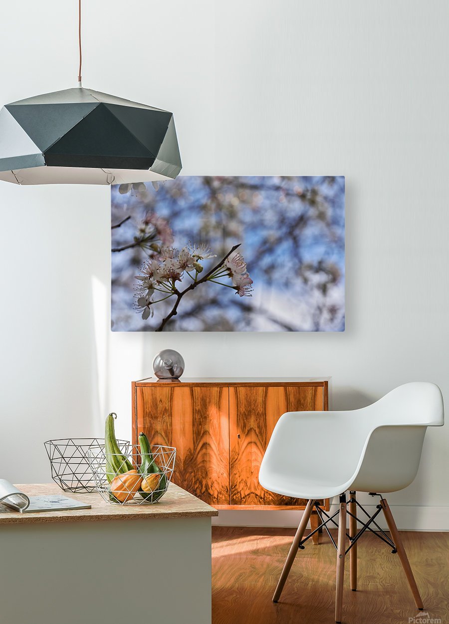 Spring Flowers  HD Metal print with Floating Frame on Back