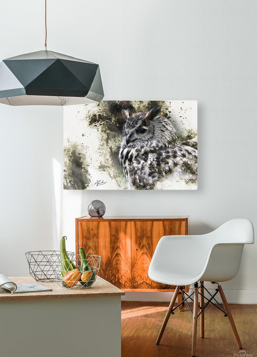 European Eagle Owl  HD Metal print with Floating Frame on Back