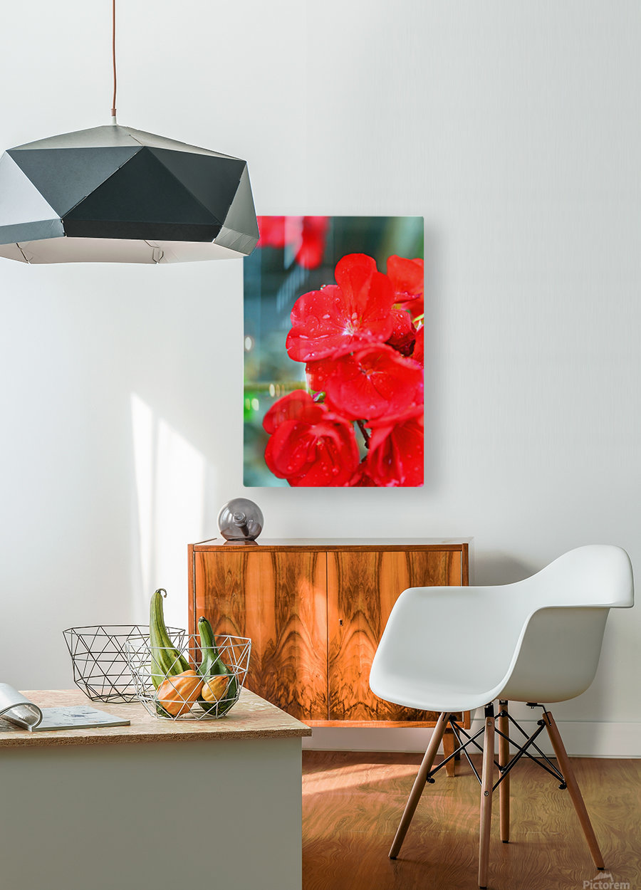 Elegantly Red  HD Metal print with Floating Frame on Back