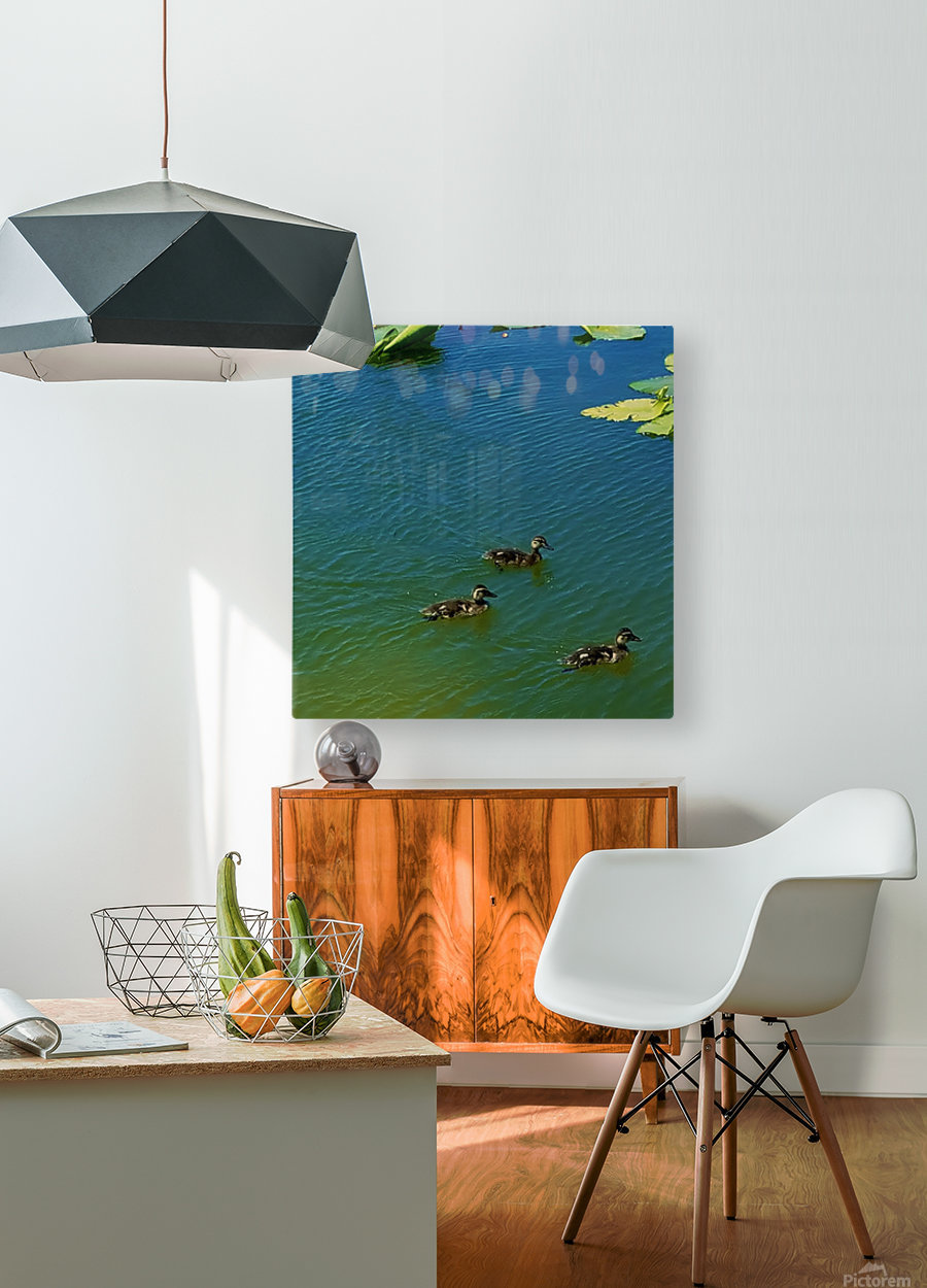 20190406_150448  HD Metal print with Floating Frame on Back