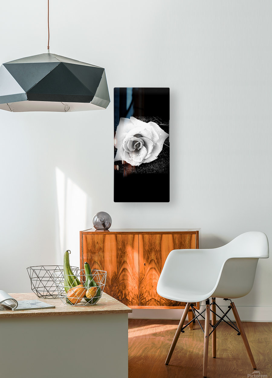 20170826_101200  HD Metal print with Floating Frame on Back