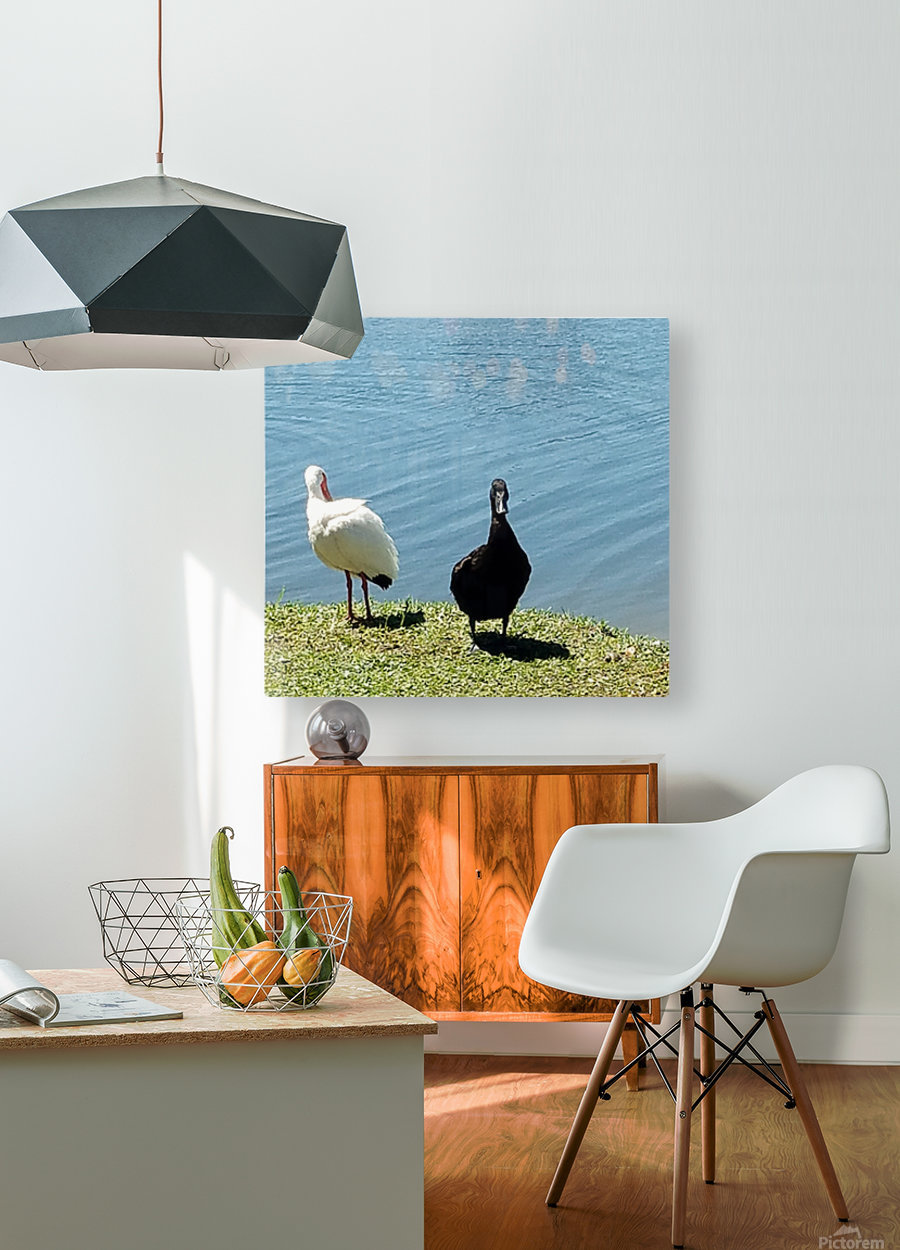 20190406_145356  HD Metal print with Floating Frame on Back